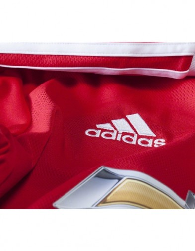 Detail Manchester United Home LS