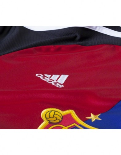 Detail FC Basel Home
