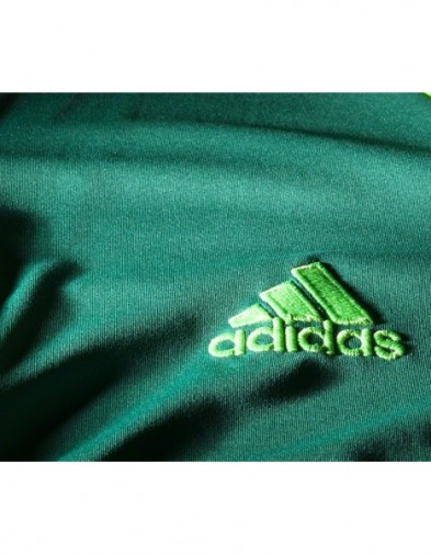 Detail Real Madrid GK Green