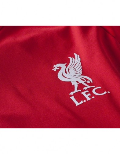 Logo Liverpool Training red