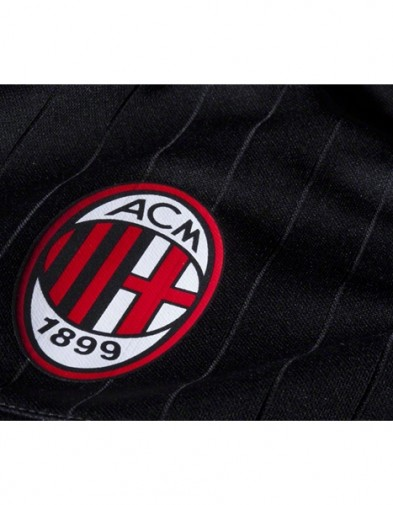Detail Milan Training
