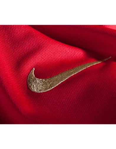detail jersey portugal home piala dunia